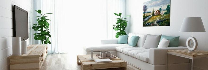 locatif meublé